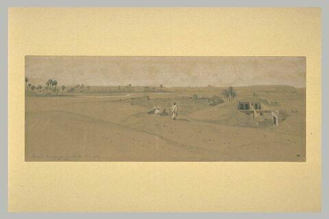 Ruines de Memphis et les pyramides de Saqqarah