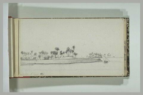 Paysage : bord du Nil en Haute Egypte
