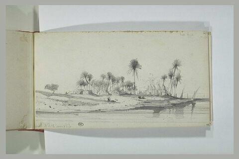 Paysage des abords du Nil, en Haute Egypte