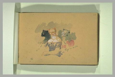 Trois femmes à masque de chatte