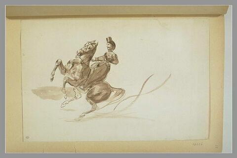 Cavalier sur un cheval cabré