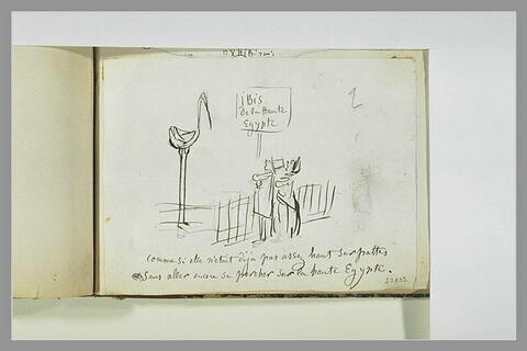 Caricature : deux bourgeois contemplant un oiseau échassier