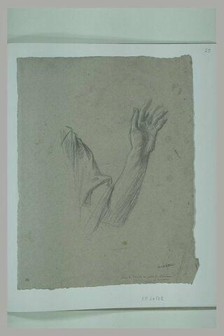 Etude d'un bras gauche levé