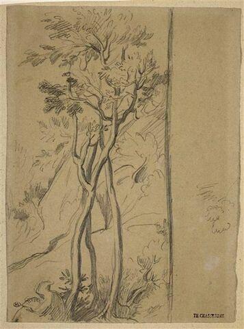 Moine lisant au pied d'un bouquet de trois arbres élancés et entrecroisés