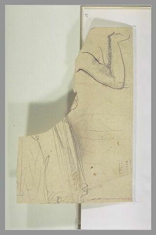 Bras replié ; fragment de draperie
