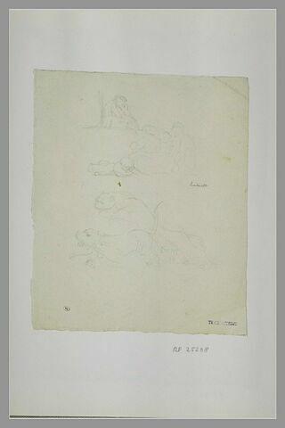 Homme assis ; trois femmes et un enfant assis au sol ; lions