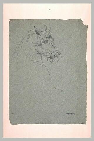 Tête de cheval harnaché, de profil vers la droite