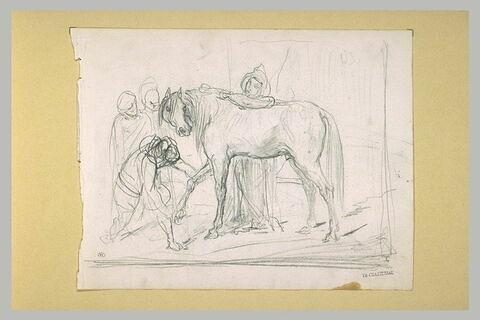 Arabes autour d'un cheval