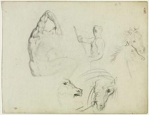 Athlète assis ; homme à mi-corps ; quatre têtes de cheval