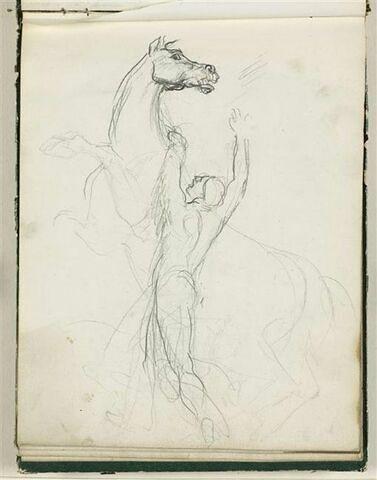 Homme retenant un cheval cabré