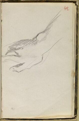 Etude d'un bras droit