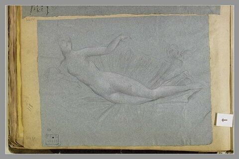 Vénus couchée dans une coquille