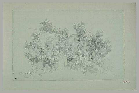 Faléries : arbres au-dessous d'une muraille