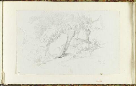 Civita Castellana : rochers et arbres