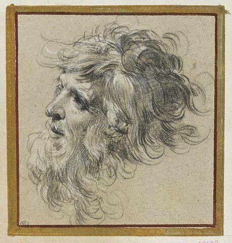 Tête d'homme aux cheveux en désorde, de trois quarts à gauche