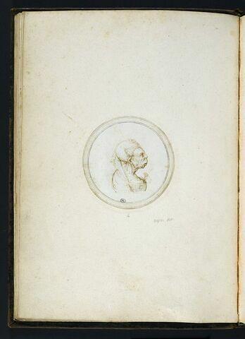 Vieille femme en buste de profil à droite, avec un oeillet dans le décolleté