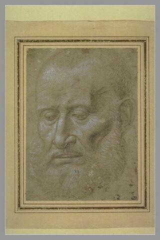 Tête d'homme âgé, chauve, barbu