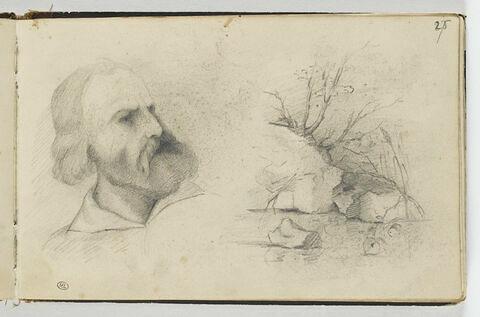 Portrait d'homme barbu ; paysage rocheux