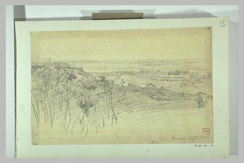 Paysage panoramique de plaine avec des arbres au premier plan