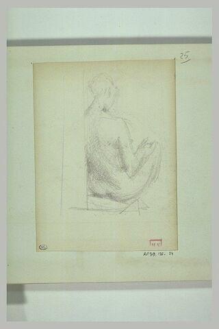 Femme nue, assise, de dos, les genoux pliés