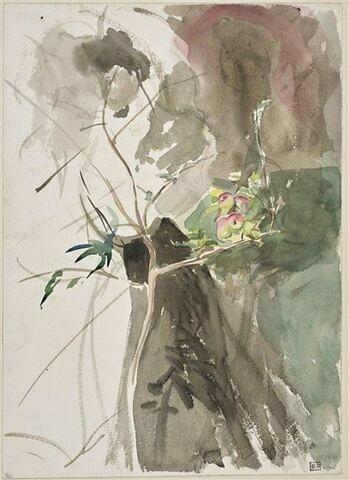 Silhouette féminine derrière un pommier portant quelques fruits