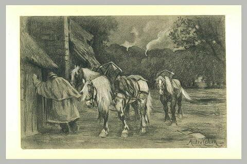 Homme rentrant à l'écurie trois chevaux de labour
