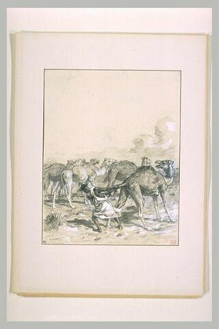 Antar saisissant un chameau par la queue