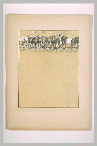 Antar sépare mille chamelles du troupeau du roi Mounzir pour les prendre