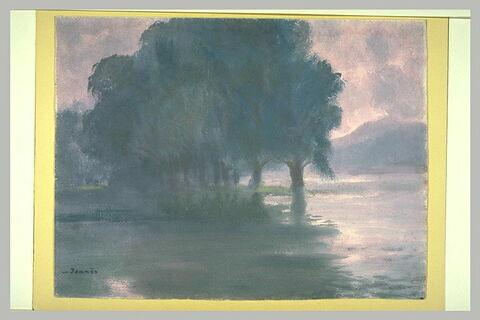 Soleil couchant, les arbres à Puteaux