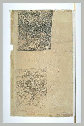 Feuille d'études : rochers dans la forêt, arbre dans les collines, femme