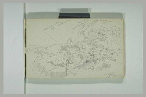 Paysage avec une butte recouverte de pins et d'ajoncs à Varengeville