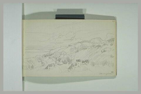 Paysage avec des vaches sur la falaise à Varengeville