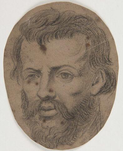 Tête d'homme barbu, de 3/4 gauche