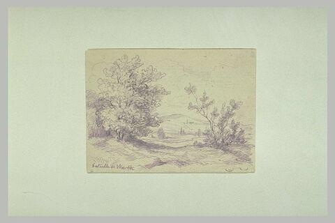 Paysage de plaine avec quelques arbres au premier plan
