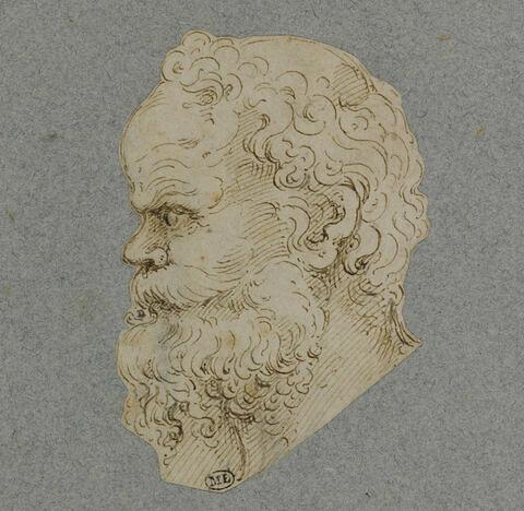 Tête d'homme barbu, de profil, motif pour une grotesque