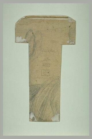 Pan de draperie et sabots et pattes antérieures d'un cheval au galop