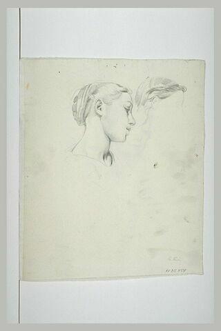 Etude d'une tête de femme de profil, penchée vers la gauche