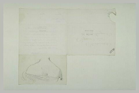 19 octobre 1899, Paris, à Mlle Cogniet ; Buste de femme, de dos