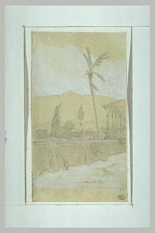 Loggia et Palmier