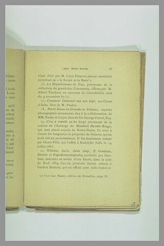 Page 37 du Chat Noir - Guide