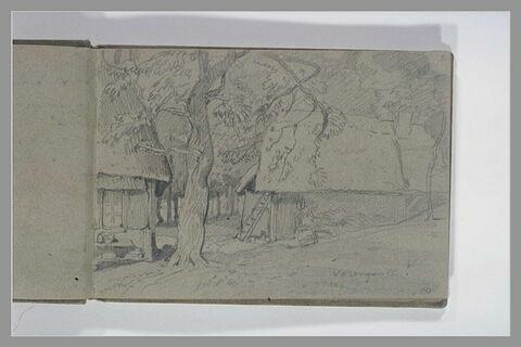 Chaumières sous les arbres à Varengeville