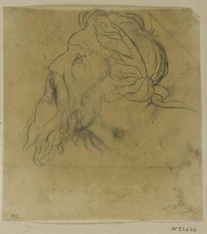 Tête d'homme barbu, Egée