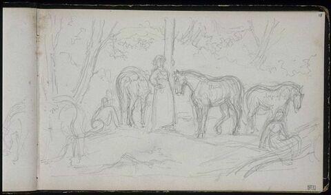 Halte de cavaliers sous les arbres