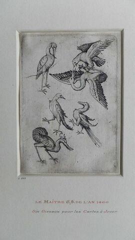 Six oiseaux pour les cartes à jouer du maître