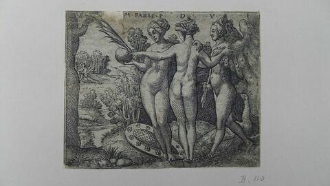 Vénus, Pallas et Junon