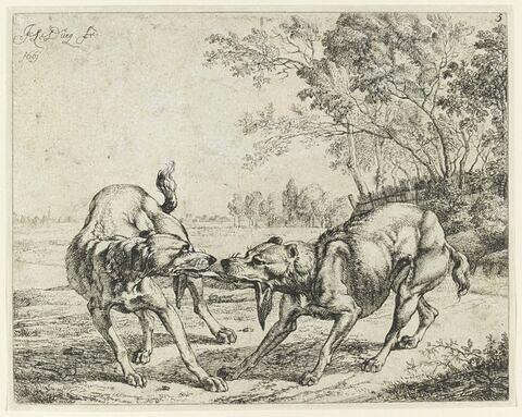 La viande disputée