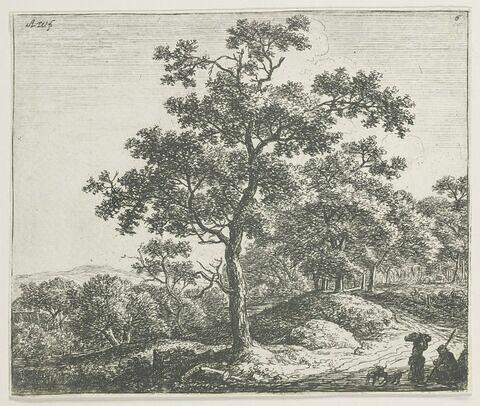 L'arbre au milieu du devant