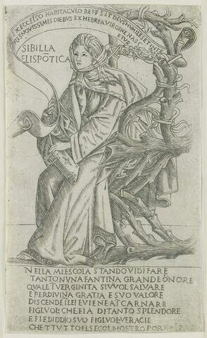 La Sibylle de Hellespont