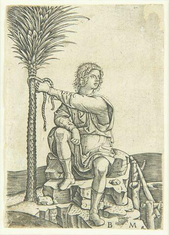 L'homme assis près d'un palmier
