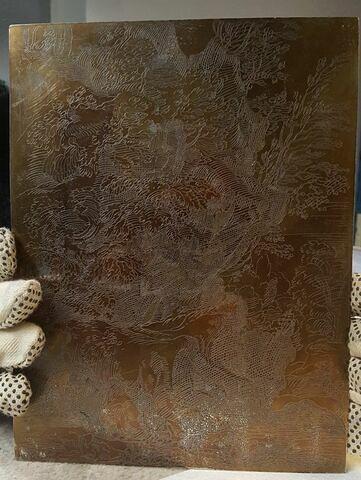 Paysage. Des rochers couverts de brousailles.